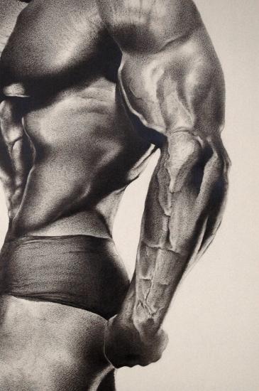Arnold Schwarzenegger by sonnyboyy
